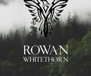 tog, throne of glass, and heir of fire image