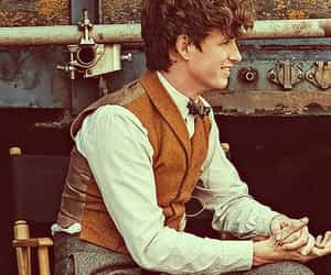 newt scamander, harry potter, and book image
