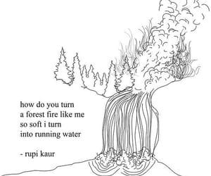 """Résultat de recherche d'images pour """"rupi kaur the loving how do you turn a forest"""""""
