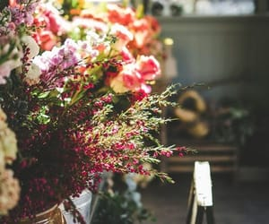 colors, flowers, and light image