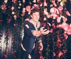 shawn mendes, shawn, and flowers image