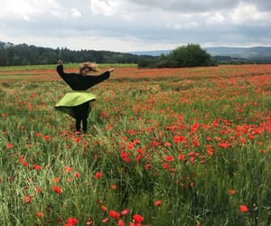 field, flower, and france image