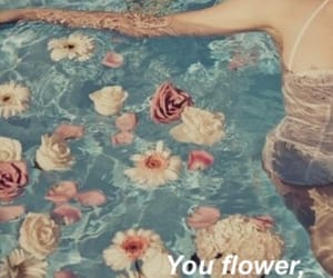 beaty, asthetic, and floral image