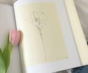 flower, illustration, and flowers image