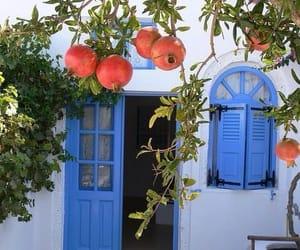 pomegranates image