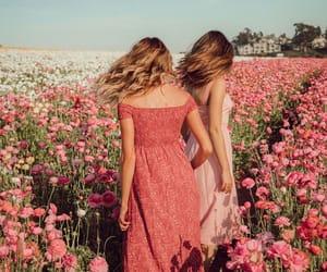 flowers, pink, and maddie ziegler image