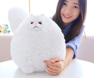 cats, gift, and plush image