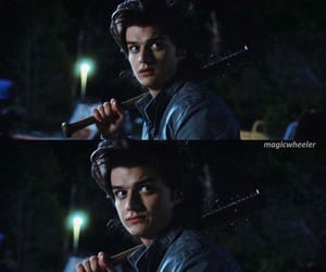 fandom, st, and steve harrington image