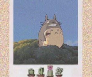 bunny, cactus, and my neighbour totoro image