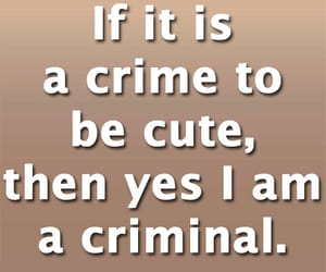 crime, funny, and funny quotes and sayings image