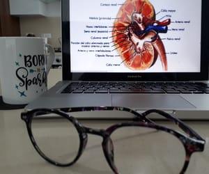 anatomy, kidney, and medicine image