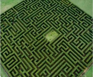 paisaje, verde, and laberinto image