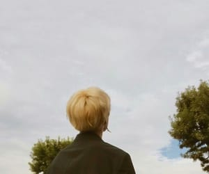 blonde, tree, and aesthetically image