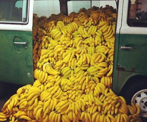 bananas, bus, and fruit image