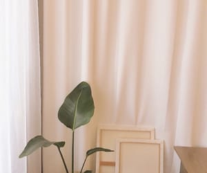 aesthetic, green, and room image