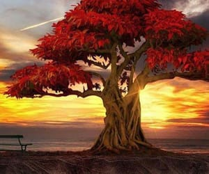 art, red tree, and nature image