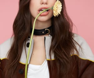 dua lipa, flowers, and singer image