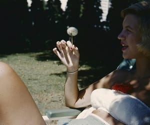 summer, sylvia plath, and vintage image