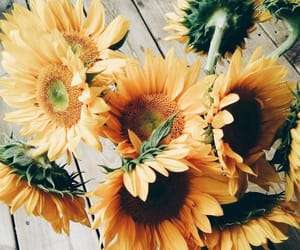 aesthetic, bouquet, and yellow image
