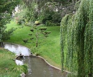 france, garden, and paris image