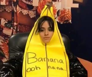 havana, banana, and funny image