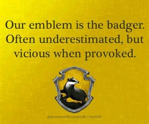 hufflepuff, badger, and harry potter image