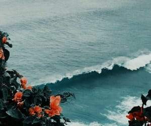 ocean, blue, and flowers image