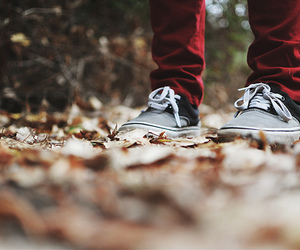 autumn, feet, and foot image