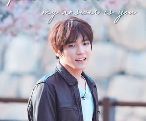 cherry blossoms, nct, and japan image