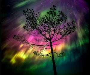 aurora, northern light, and space image