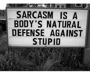sarcasm, funny, and quotes image