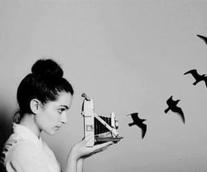 alternative, bird, and fashion image