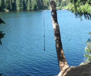 camping, rope, and summer image