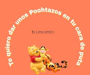 bear, disney, and frases image
