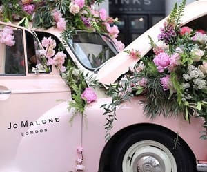 pink, flowers, and car image