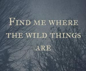 wild things are and find me where image