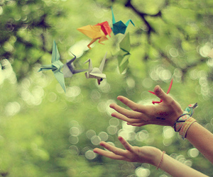 photography and origami image