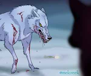 anime, wolf, and blue image