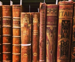 books, rustic, and vintage image