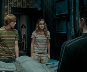 gryffindor, hermione granger, and order of the phoenix image