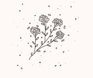 flowers, drawing, and tumblr image