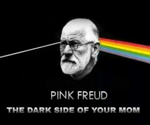 freud and Pink Floyd image