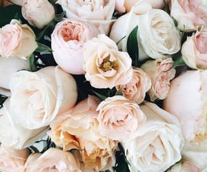 flowers, bouquet, and roses image