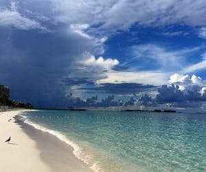 bahamas, beaches, and Caribbean image