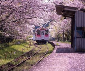 japan, pink, and place image