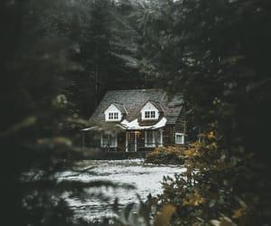 adventure, autumn, and cabin image