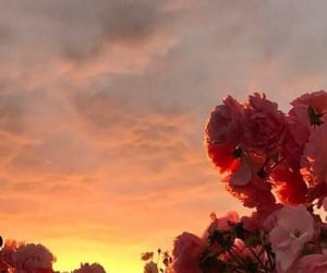 flowers, wallpaper, and clouds image