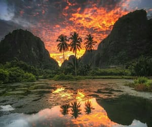 clouds, palms, and sunset image