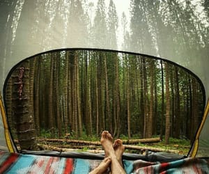 adventure, nature, and outdoor image