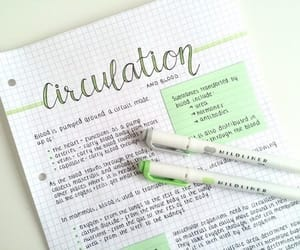notes, green, and school image